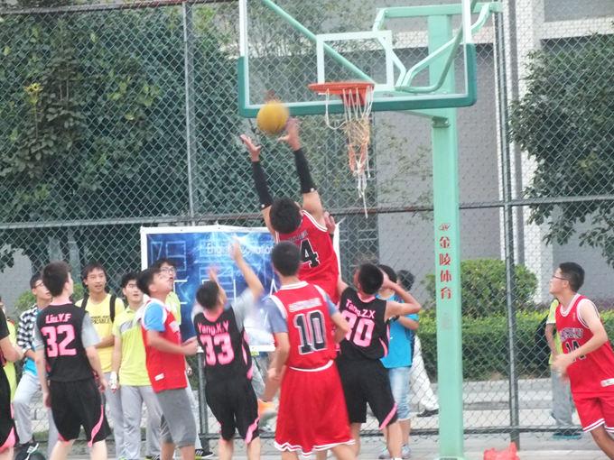 光体育节 篮 排球联赛结果